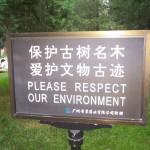Luckyarn y el respeto medioambiental